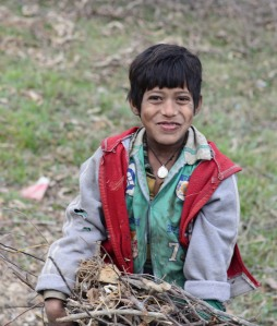 boy collecting firewood