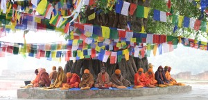 monks under tree, Lumbini