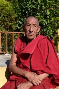 older monk at Karmapa