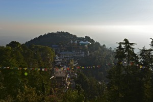 view from hotel roof of Namgal Monastery where His Holiness lives