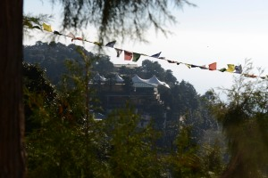 view from my room of the monastery and residence of the Dalai Lama