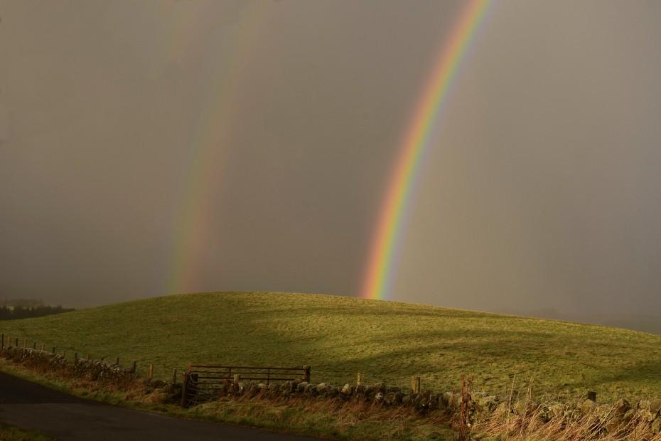 2x rainbow