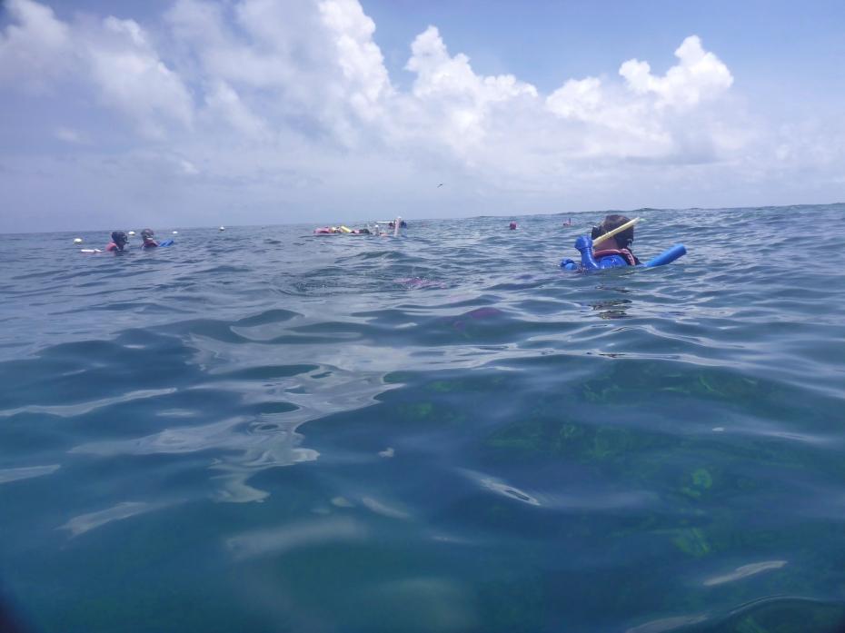 snorkelers-4