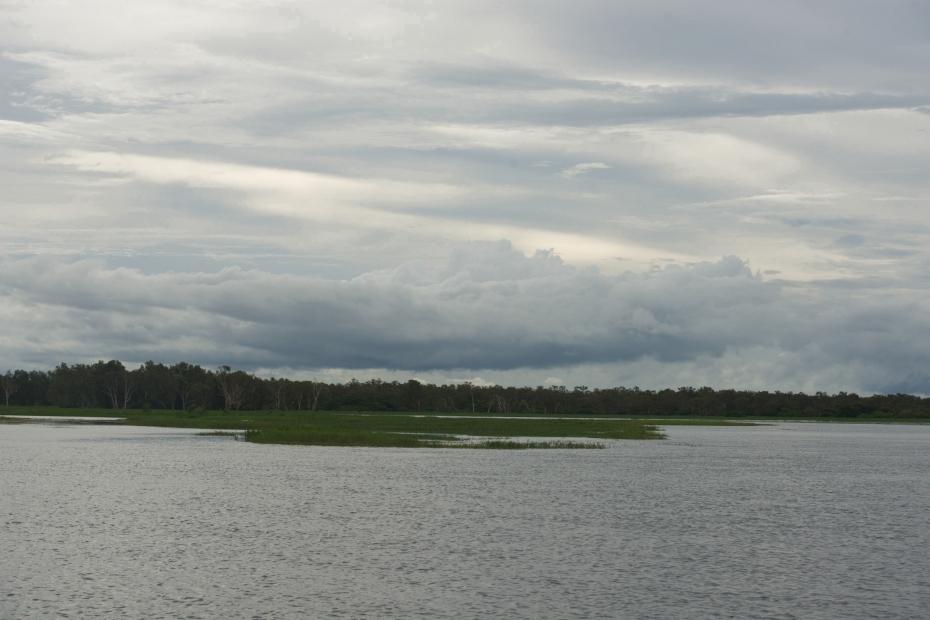 Yellow River wetlands-36