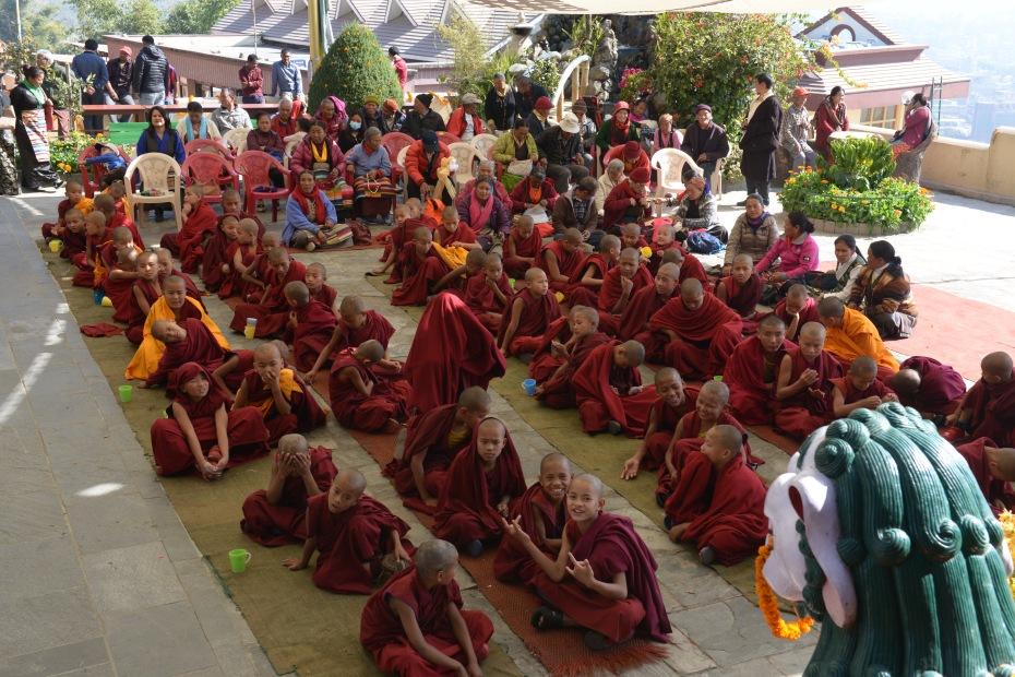 lots-of-mini-monks